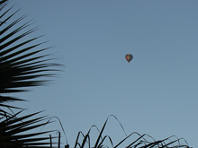 hot air balloon over the back yard