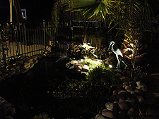 Pond at night.