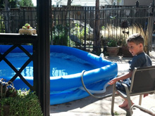 Ryder watching the pool get filled up.