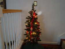 Ryder's tree is alraedy done!