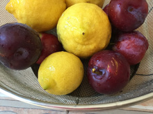 plums and lemons from the yard