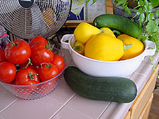 Tomatoes and squash.