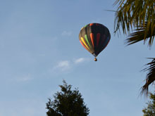 hot air balloon over the yard